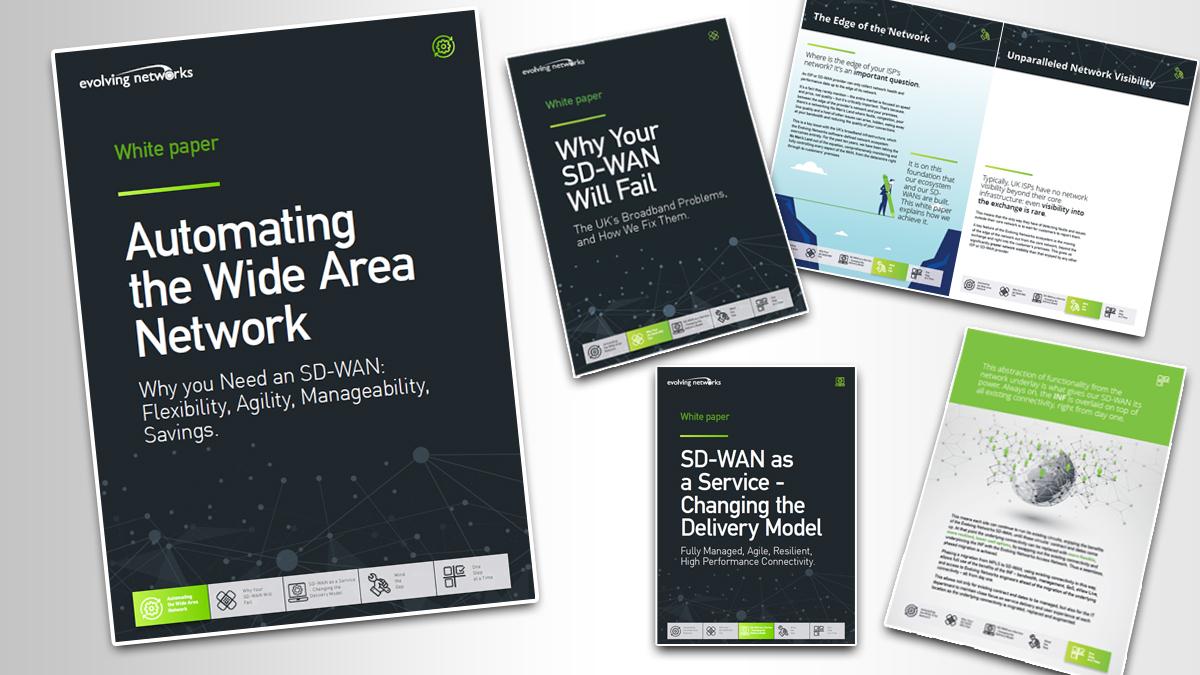 Evolving Networks: Whitepaper Series